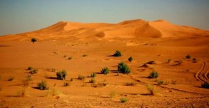 viajes-desierto-sahara-default-30581-0