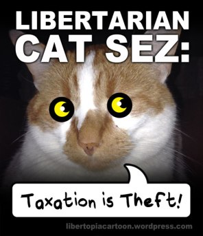 taxation is theft, cat meme, cat, libertarian, libtarianism, meme, voluntarism