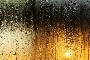 moisture control conclusions