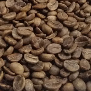 Colombian MC green coffee beans