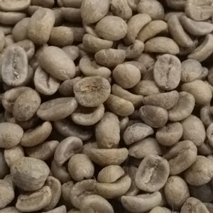 Guatemalan green coffee beans