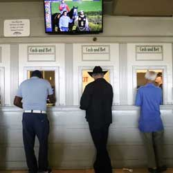 Tribes Get Extension on California Sportsbook Signature Process