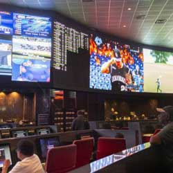 Sportsbook Legislative Roundup – Canada Delays and Tennessee Wants a Fall Launch