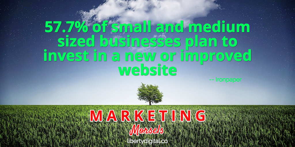 smbs invest in websites