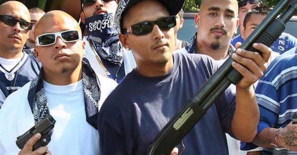 Guns-e1484410038761