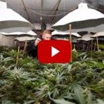 FOUND! $2 Million Cannabis Factory Hidden In Secret Nuclear Bunker