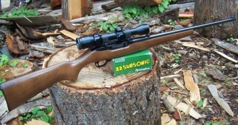 Does WA gun control scheme include unconstitutional literacy test?