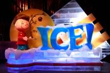 Gaylord Texan Ice