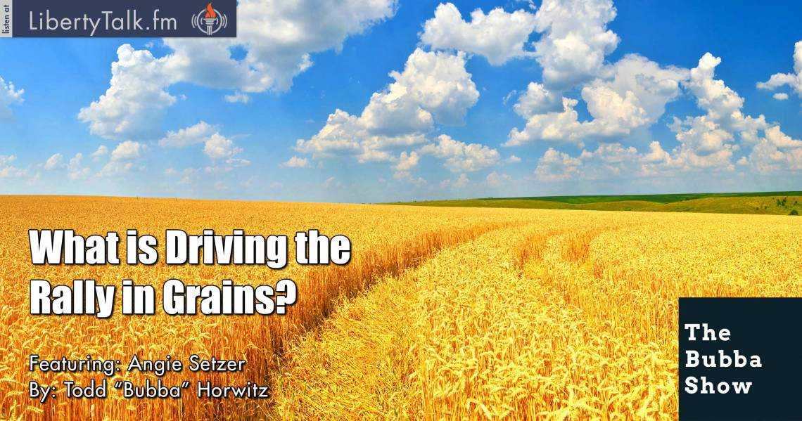 What is Driving the Rally in Grains?  - The Bubba Show