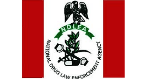 National Law Drug Enforcement Agency, NDLEA