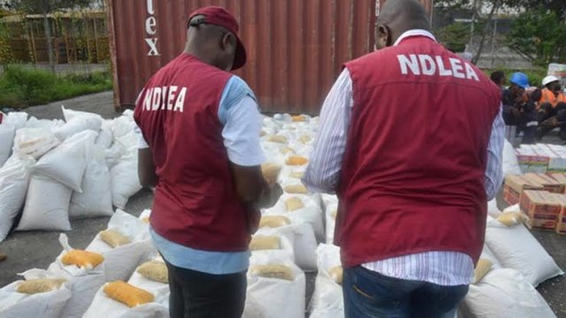 NDLEA Arrests 65 Suspects, Seizes 4582.57kg Of Narcotics In Edo State