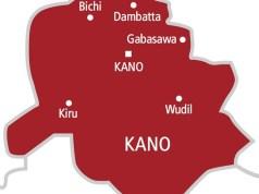 Kano Records 5 More Cases Of Coronavirus