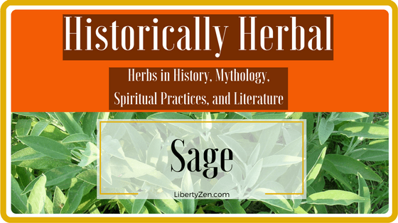 Historically Herbal – Sage