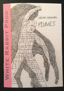 Plumes-celine-guichard-white-rabbit