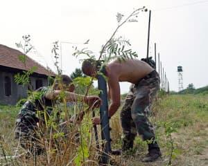 Határnyitás 2005. augusztus 2. Fotó: Heltai Csaba.