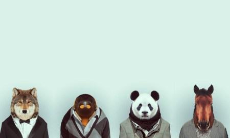állati