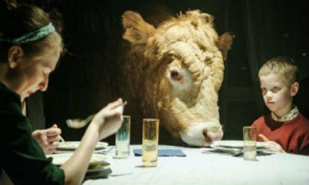 Magyar film a Chicagói és a Londoni Nemzetközi Filmfesztiválon - Szabadesés