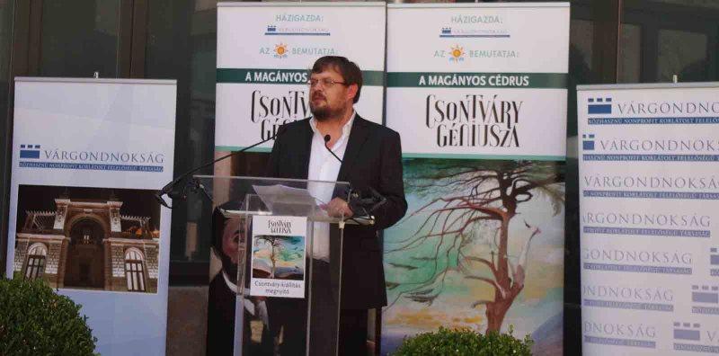 Gulyás Gábor, a Csontváry-kiállítás kurátora - a szerző fotója