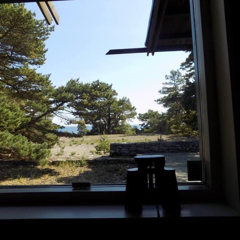 bergman és az ablakok 10