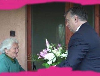 Bözsi néni a pokolba kívánja a percet, mikor beengedte Orbánt az életébe