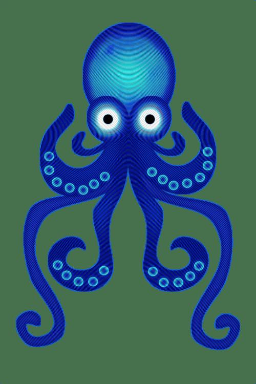 small resolution of octopus