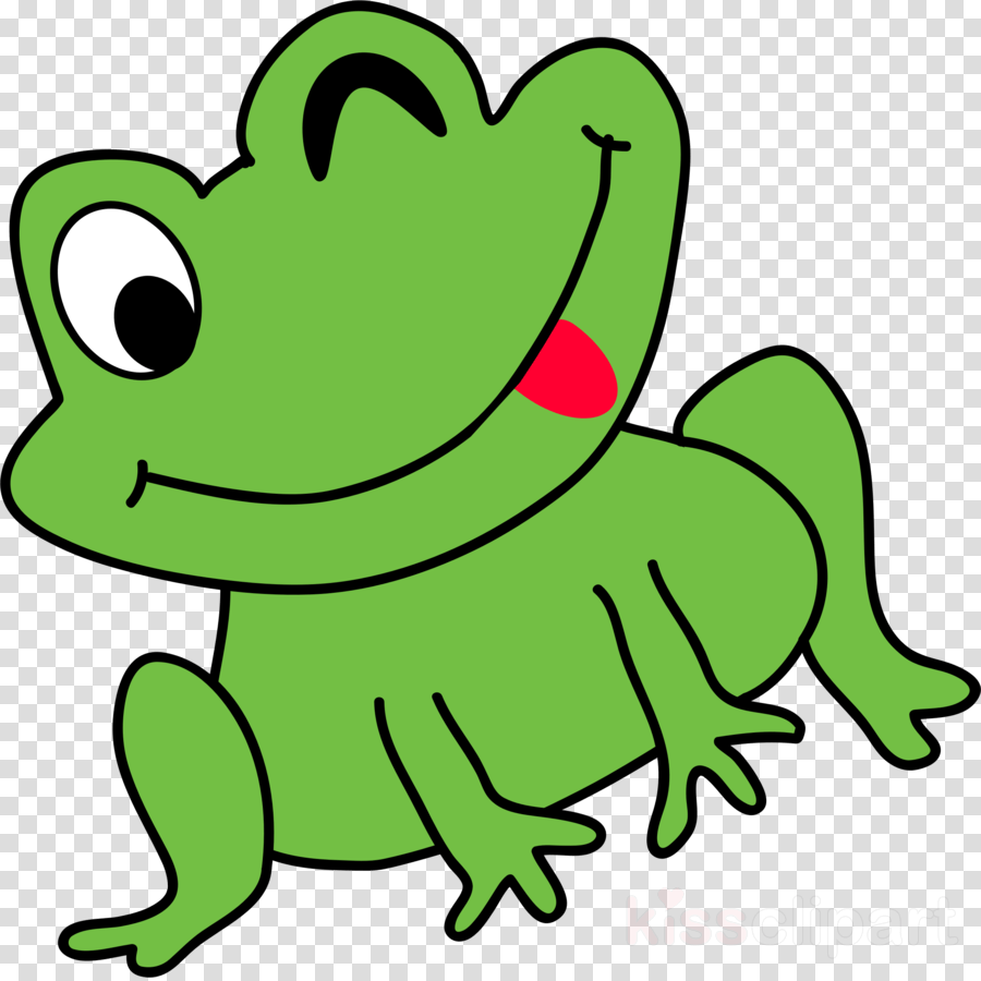 medium resolution of frog clipart frog clip art