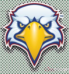 eagle mascot clipart [ 900 x 900 Pixel ]