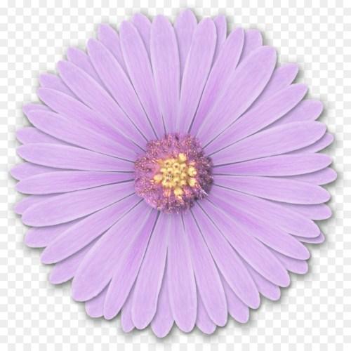 small resolution of transparent light purple flower clipart light purple flower