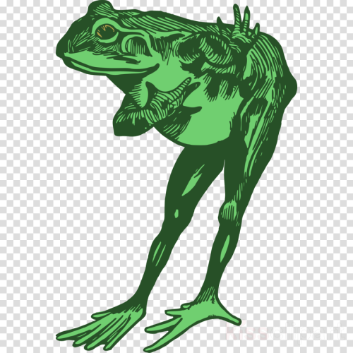 small resolution of bowing frog clipart toad true frog