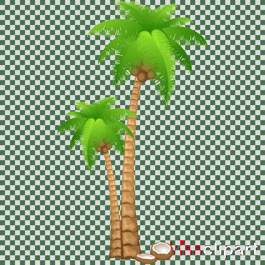 medium resolution of palm tree clipart clip art