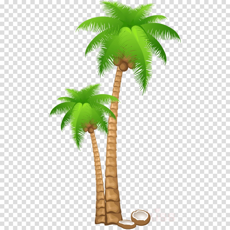 hight resolution of palm tree clipart clip art