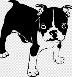 bulldog clipart french bulldog boxer [ 900 x 900 Pixel ]