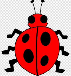 image of bug clipart insect clip art [ 900 x 900 Pixel ]