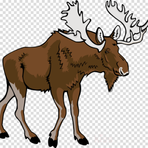 small resolution of moose clipart moose clip art