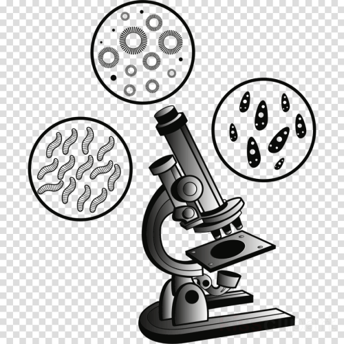 small resolution of microscope and cell clipart optical microscope clip art