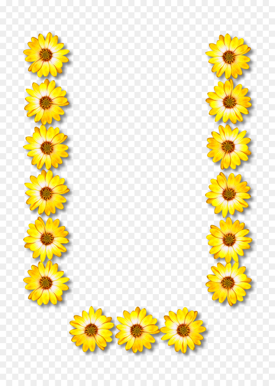 medium resolution of alphabet clipart alphabet letter common sunflower