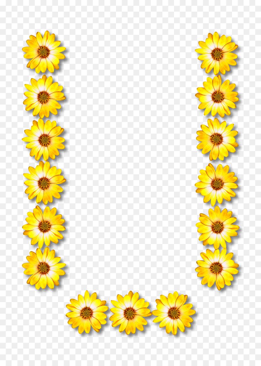 hight resolution of alphabet clipart alphabet letter common sunflower