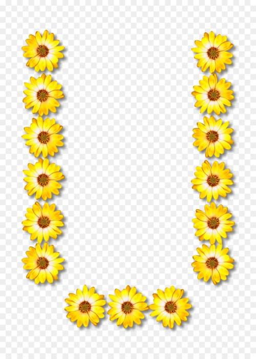 small resolution of alphabet clipart alphabet letter common sunflower
