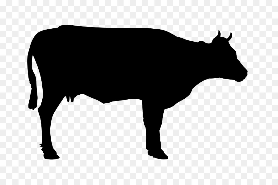 cow backgroundtransparent png image