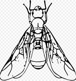 winged ant clipart ant clip art [ 900 x 940 Pixel ]