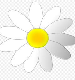 download oxford high school oxford clipart sunflower m oxford high school clip art flower white yellow [ 900 x 900 Pixel ]