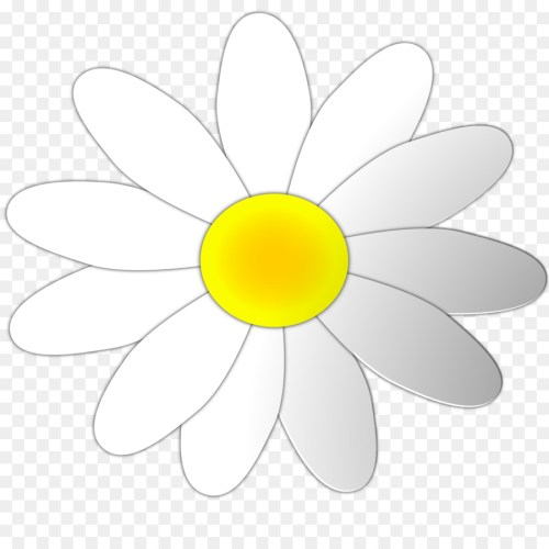small resolution of download oxford high school oxford clipart sunflower m oxford high school clip art flower white yellow