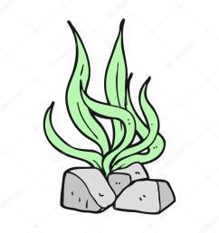 drawing royaltyfree cartoon seaweed [ 900 x 900 Pixel ]