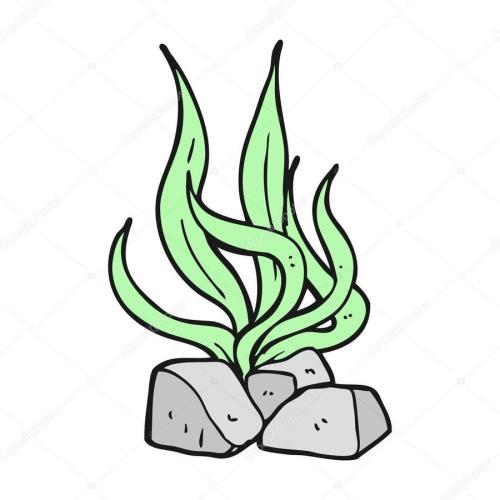 small resolution of drawing royaltyfree cartoon seaweed