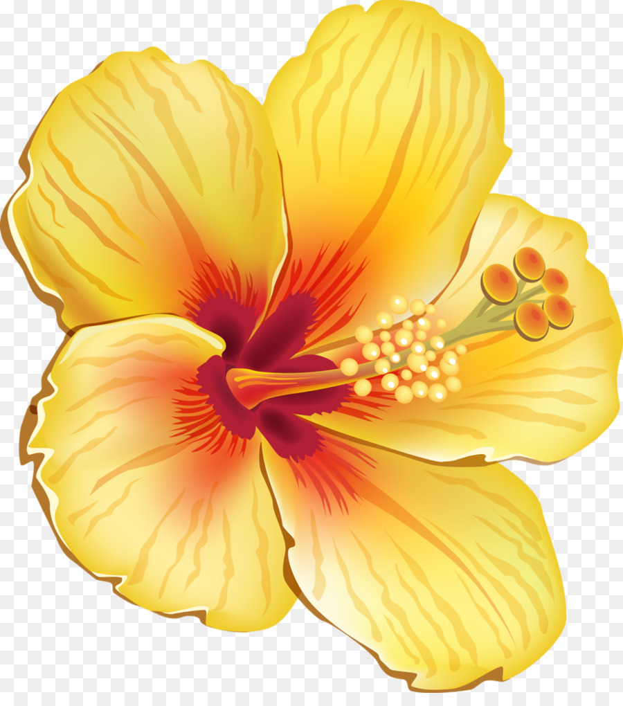 medium resolution of tropical flowers clipart tropics clip art