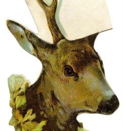 antler clipart elk reindeer africa [ 900 x 1441 Pixel ]