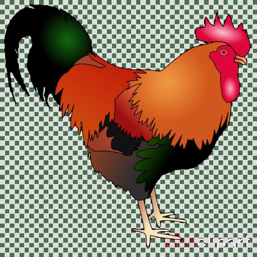 small resolution of chicken clipart rooster cochin chicken clip art