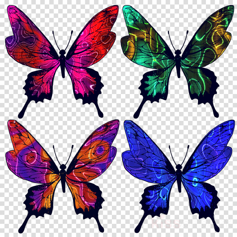 medium resolution of batik butterfly clipart monarch butterfly insect