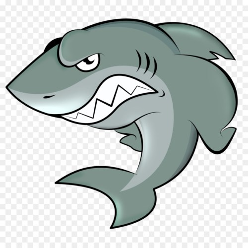 small resolution of angry cartoon shark clipart hungry shark evolution