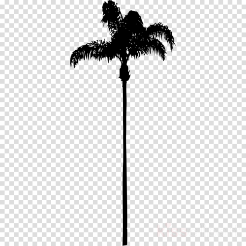 small resolution of palm tree no background clipart palm trees california palm clip art